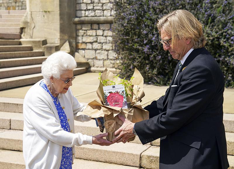 Елизавета II сажает новый вид роз