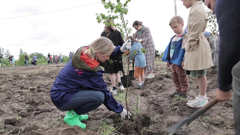 Школьники высаживают деревья