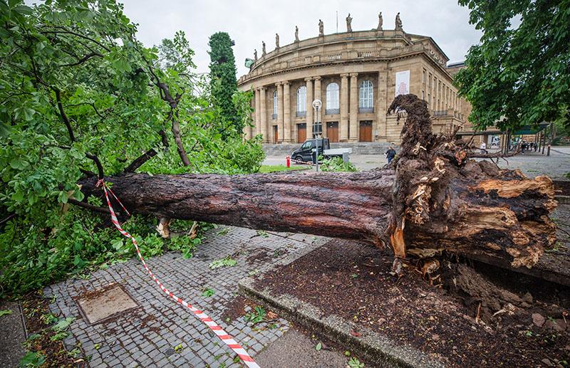 Последствия урагана в Германии