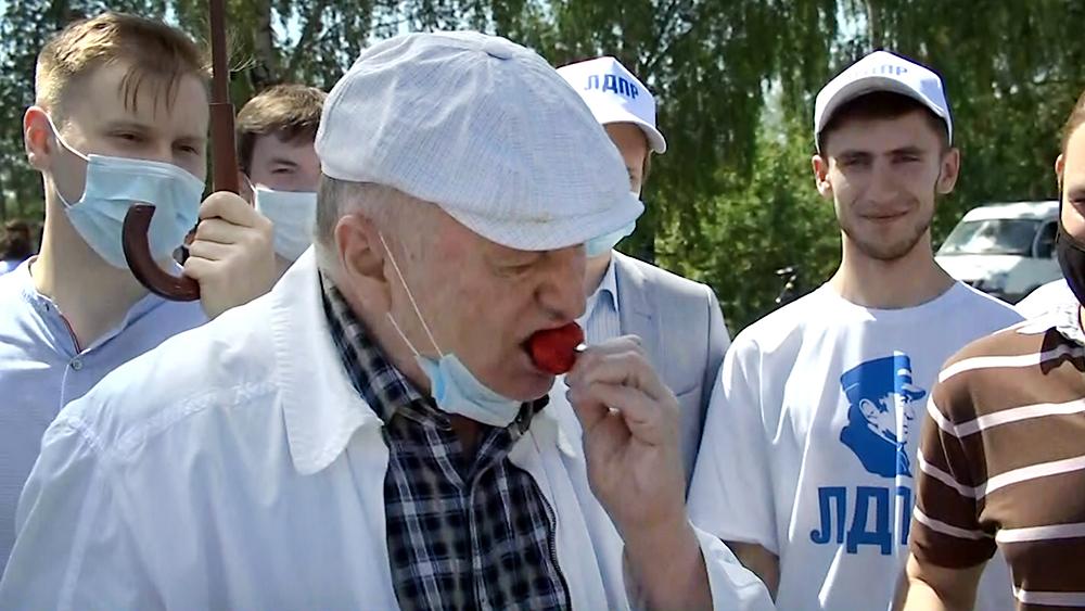 Владимир Жириновский ест клубнику