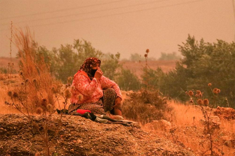 Пострадавшие от лесных пожаров в Турции