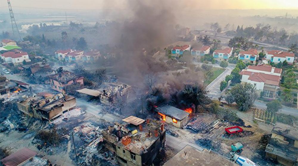Последствия лесных пожаров в Турции