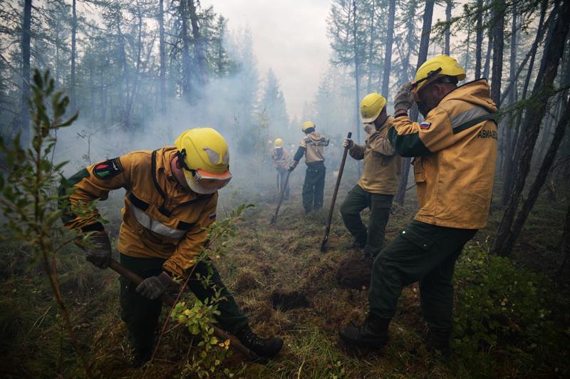 Ликвидация лесного пожара