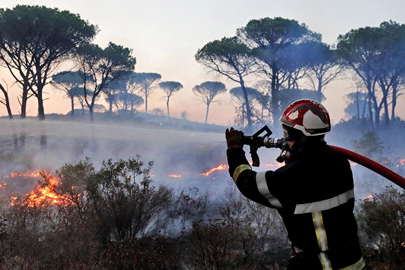 Тушение лесных пожаров во Франции