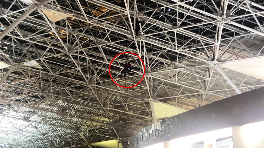 Кубинец залез под крышу терминала аэропорта Внуково