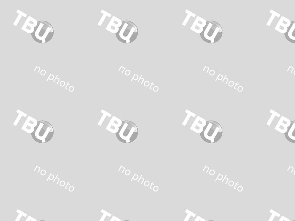 Зубры в Тебердинском заповеднике