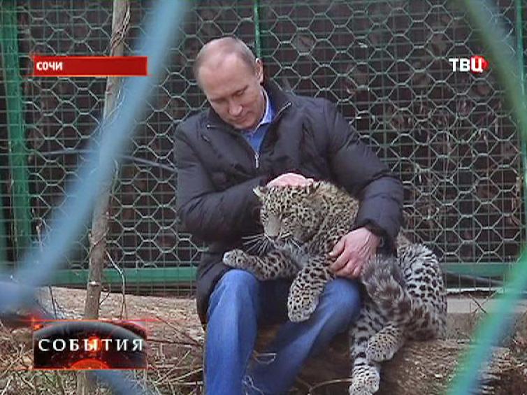 Владимир Путин посетил первый в России Центр разведения леопарда