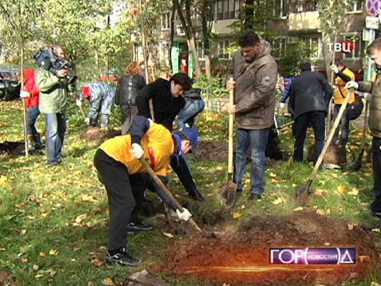 Высаживание деревьев