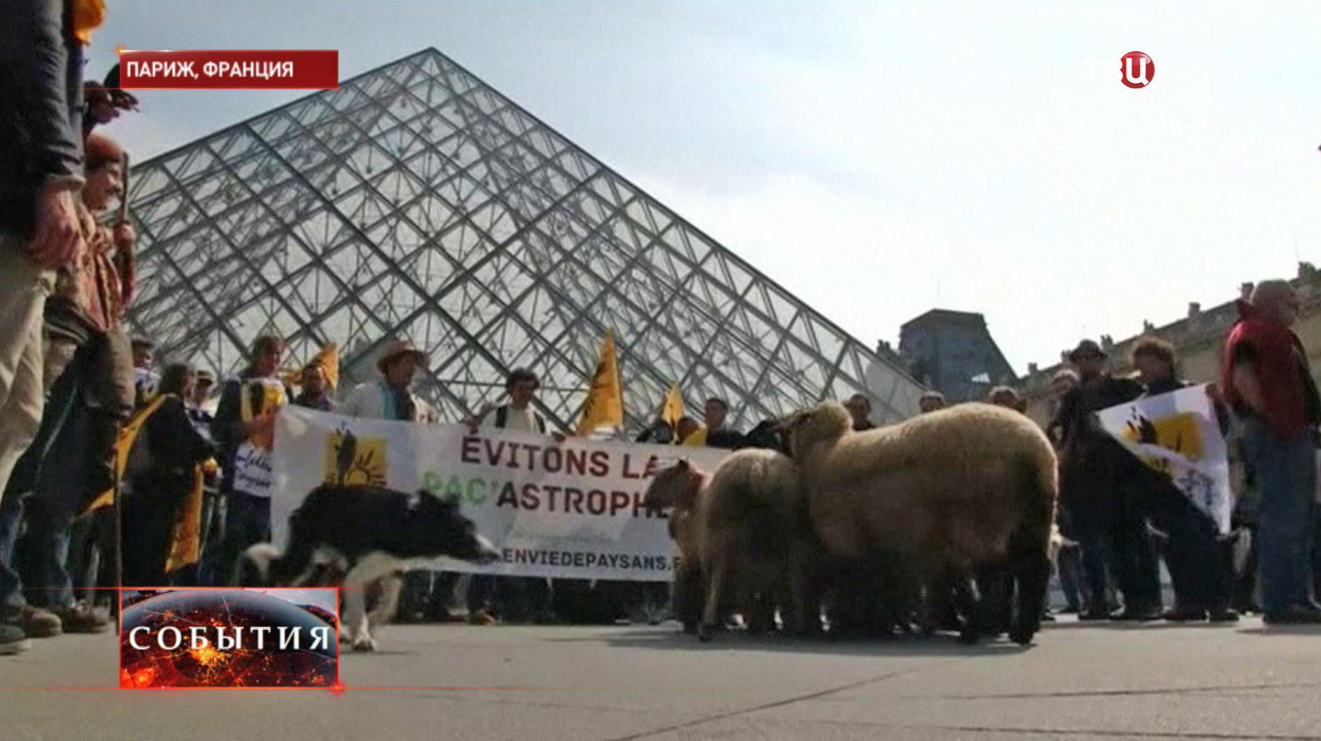 Протест фермеров во Франции