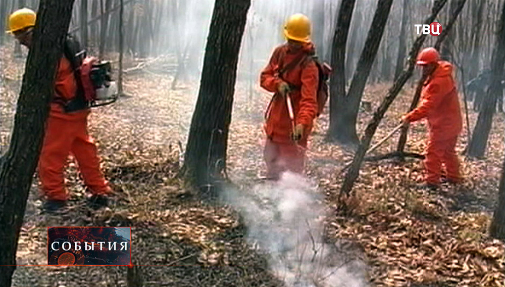 Пожарные тушат лесной пожар