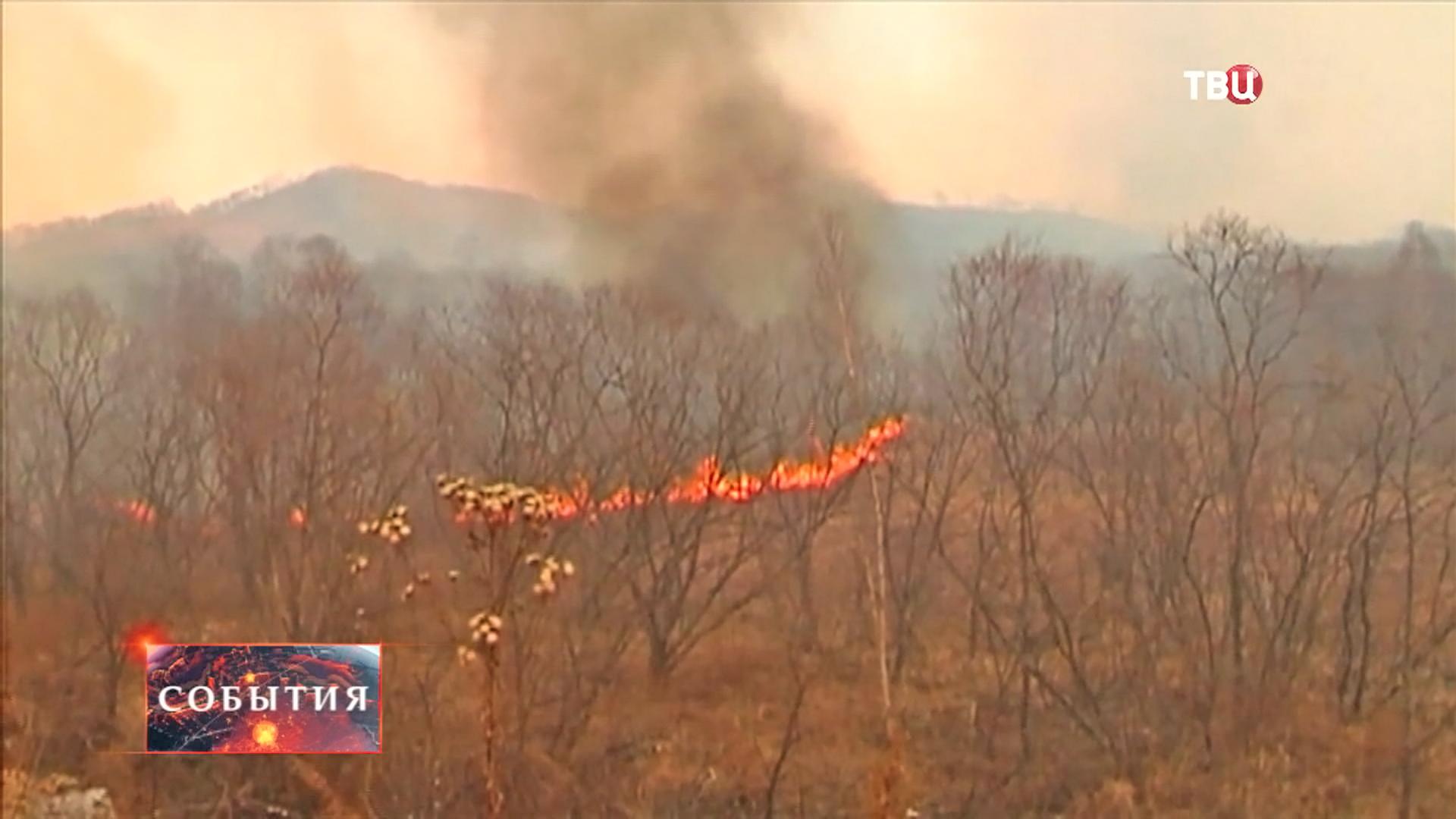Пожар на Дальнем востоке