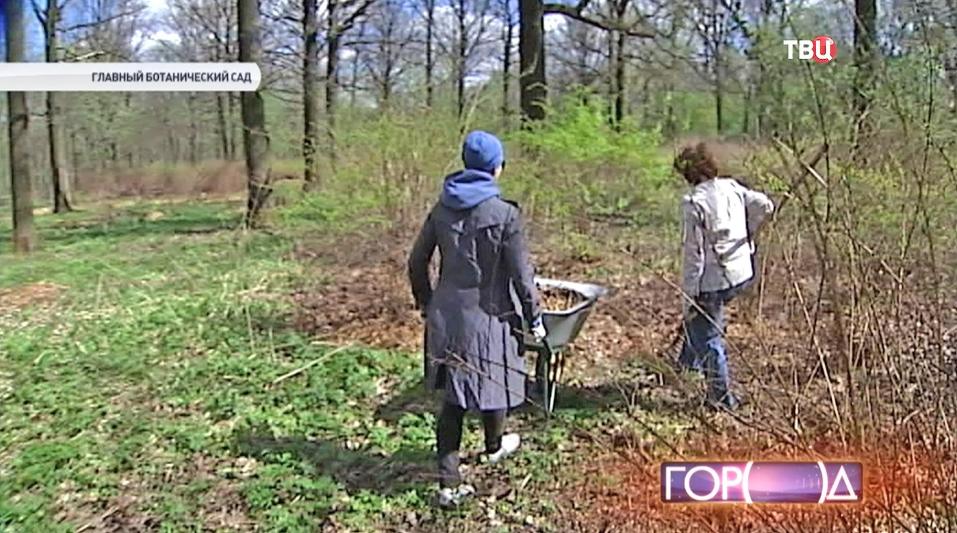 Добровольцы помогают в Ботаническом саду