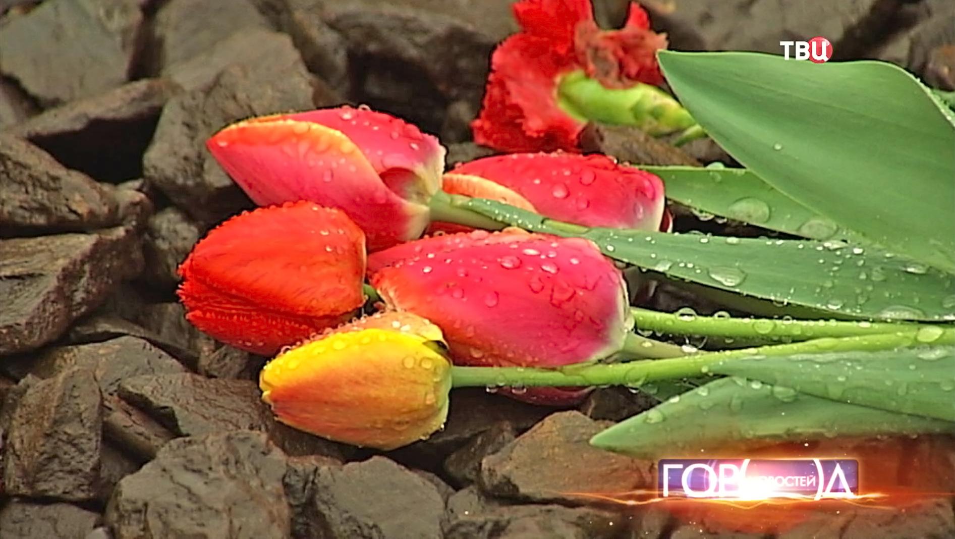 Цветы на месте трагедии