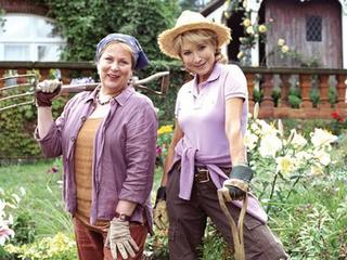"""Розмари и Тайм. Анонс. """"Испанская ракетка"""". """"Театр двух садовниц"""""""